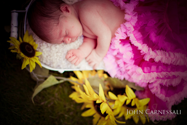 Camillus Newborn Photography