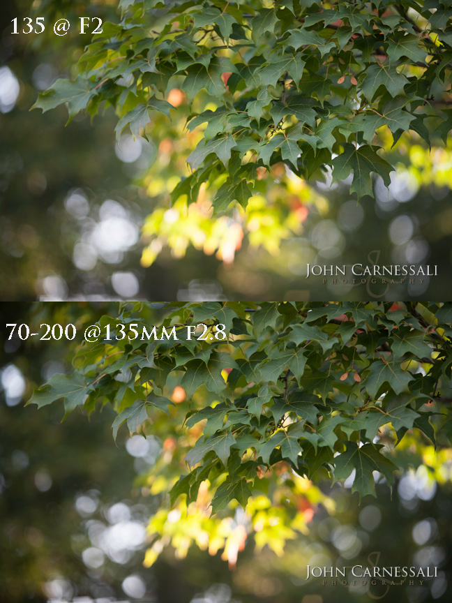 Lens comparison of the Canon 135mm f2 L vs the Canon 70-200mm 2