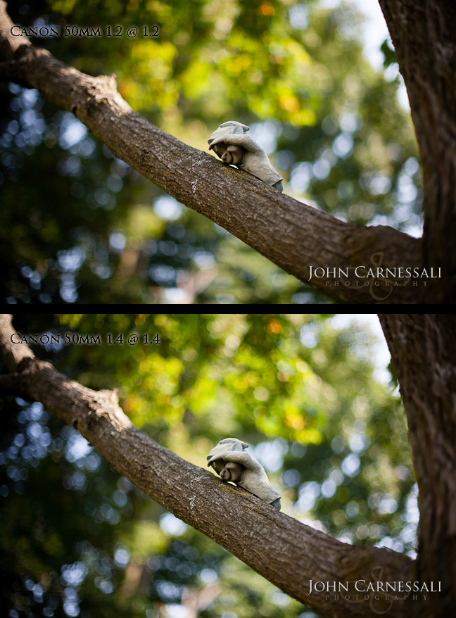 Review and Tests comparing the Canon 50mm 1.4 vs Canon 50mm 1.2 Sharpness and Bokeh